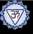 logo-intuitie-met240915